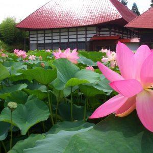 長野稲泉寺