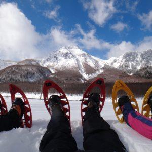 都会を離れ、雪国で自然を満喫