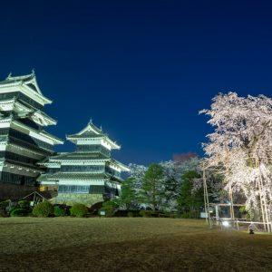 幻想的に美しい国宝松本城と桜