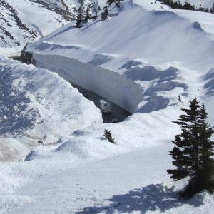 草津 雪の回廊