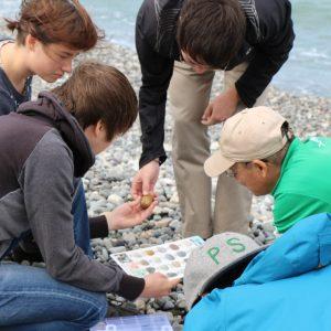 """""""ヒスイ海岸""""で自分だけの石を発見"""