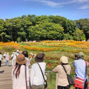 横浜市 里山ガーデン2