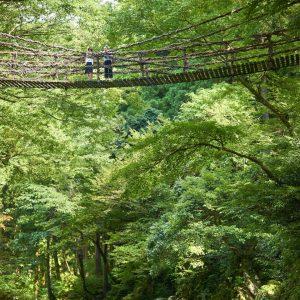 池田町 かずら橋 縮小